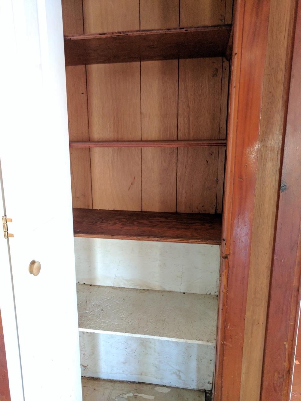 termites 1 closet